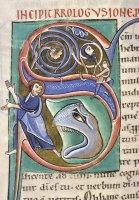 Initiale S. Jonas et la Baleine. Manuscrit Lyon BM 0411, f.164v