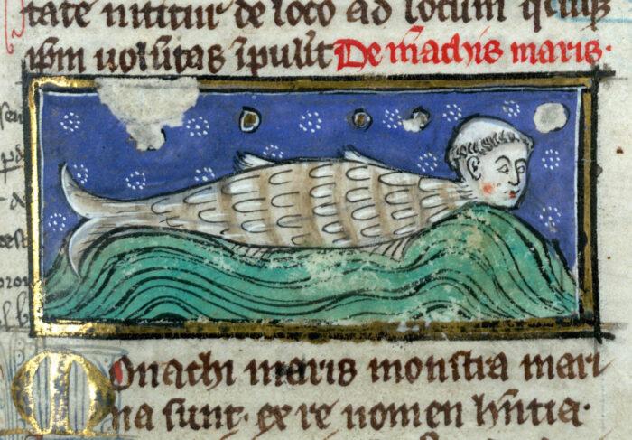 Légende de l'illustration : Thomas de Cantimpré, Liber de natura rerum, Valenciennes, BM 320, f°117r