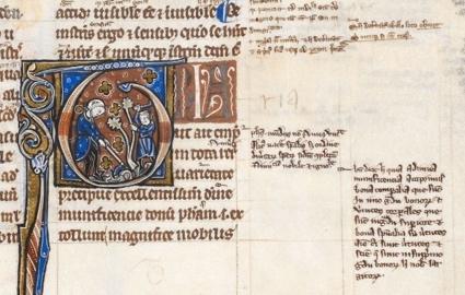 Début du De plantis glosé dans le ms. British Library, Harley 3487, fo 224r, vers 1275-1300.